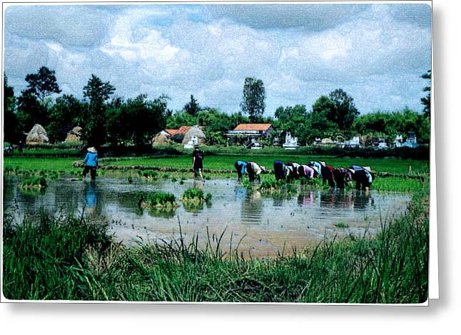 Vietnam Mekong Delta Greeting Card