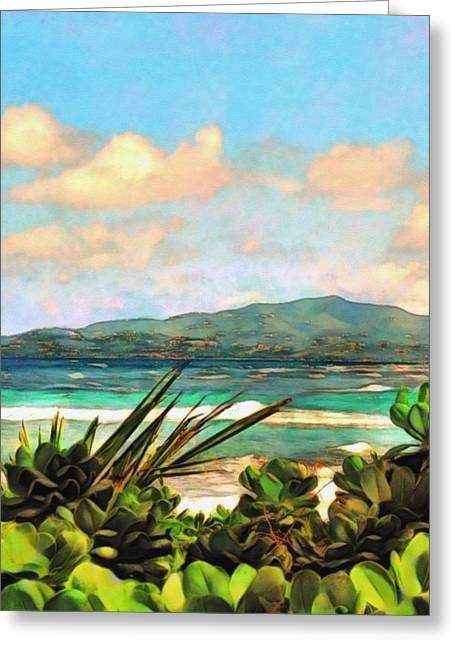 View Across Salt River - Vertical Greeting Card