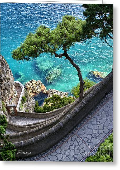 View From Capri.italy Greeting Card