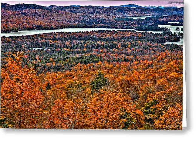 View From Mccauley Mountain Greeting Card by David Patterson