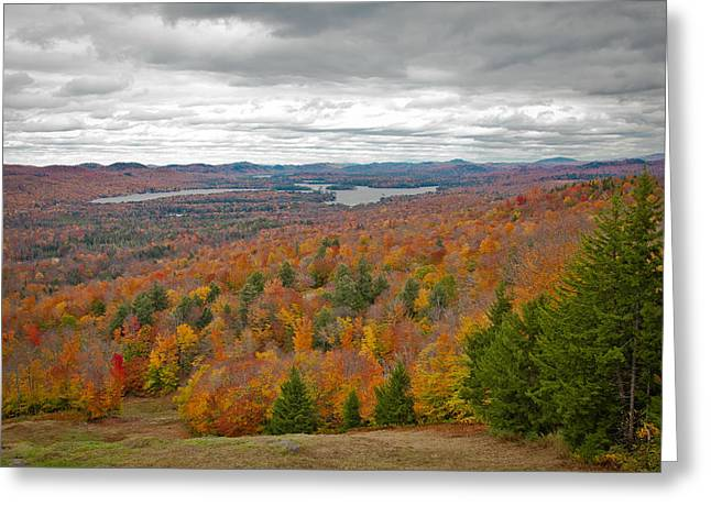 View From Mccauley Mountain Iv Greeting Card by David Patterson