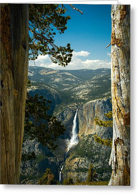 View From Sentinel Dome Greeting Card