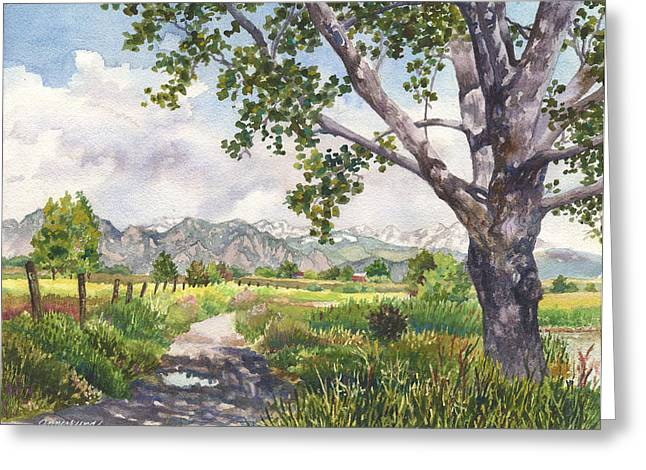 View From Stearns Lake Greeting Card by Anne Gifford