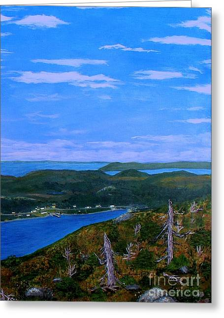 View From Sugarloaf Hill Ship Harbour Bottom Greeting Card