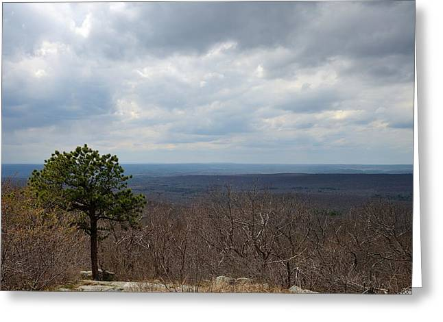 View From Sunrise Mountain Greeting Card by Steven Richman
