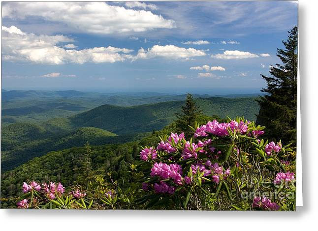 View From The Blue Ridge Parkway  Spring 2010 Greeting Card