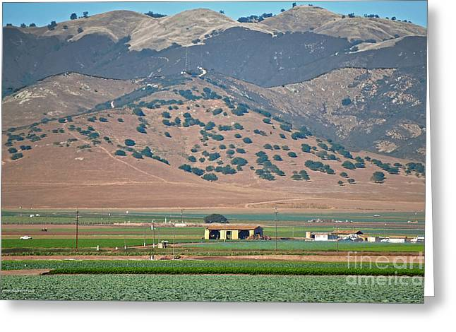 View From The Crops Greeting Card