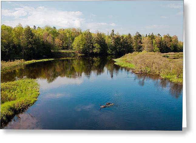 View From The Tobie Trail Bridge Greeting Card by David Patterson