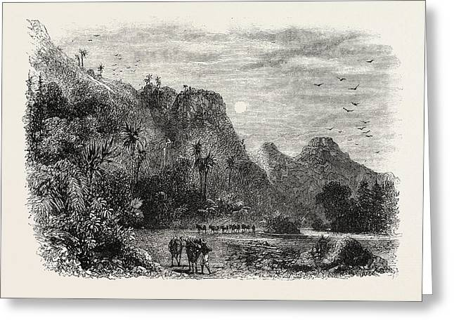 View In Cuba, 1870s Engraving Greeting Card by Cuban School