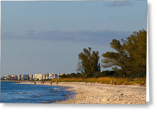 View Of A Beach, Naples, Collier Greeting Card by Panoramic Images