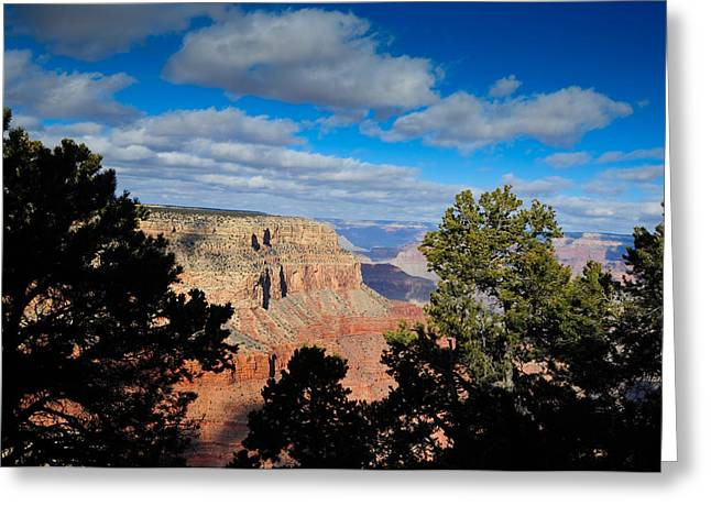 Grand Canyon Through The Junipers Greeting Card