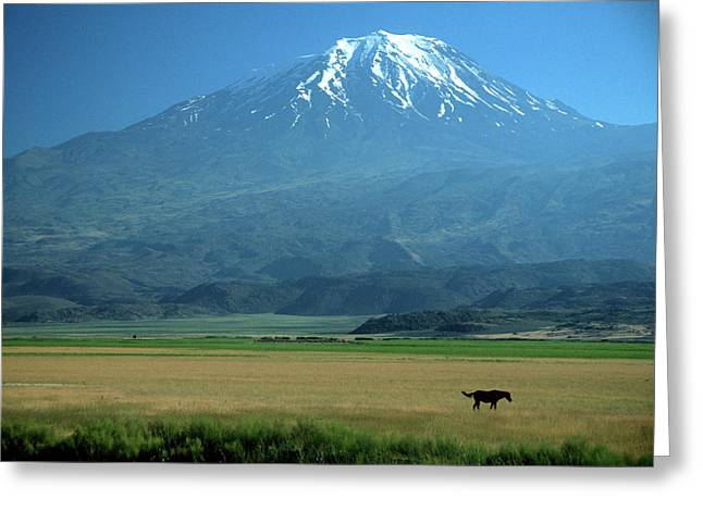 View Of Mount Ararat In Turkey Greeting Card