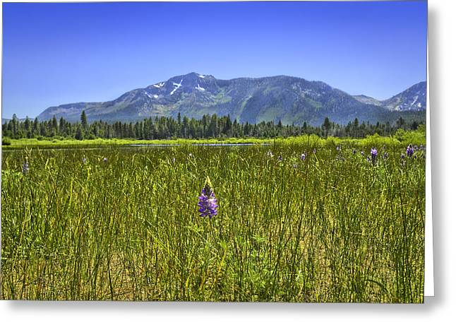 View Of Mt Tallac Greeting Card