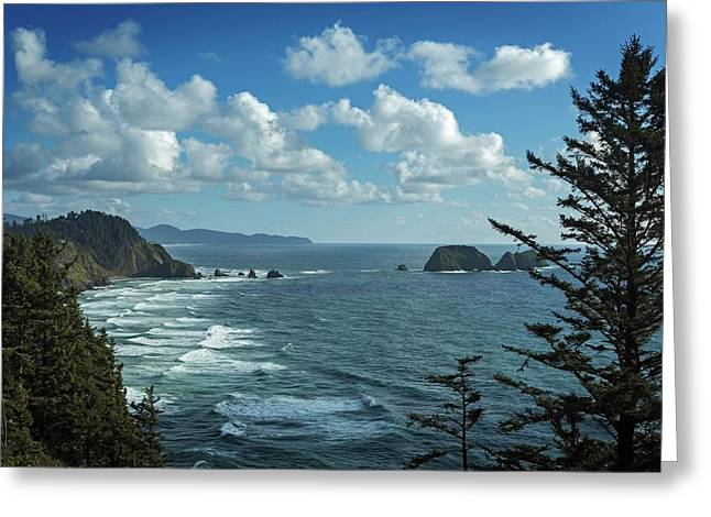 View Of Pacific Ocean From Cape Meares Greeting Card by Macduff Everton