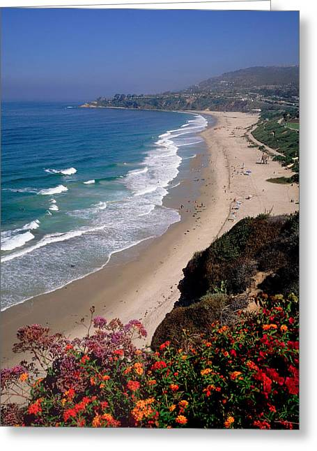 View Of Salt Creek Beach Greeting Card