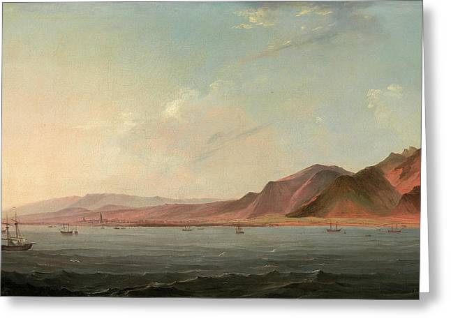 View Of Santa Cruz, Tenerife Signed And Dated Greeting Card by Litz Collection