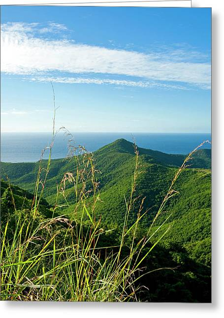 View Of South West Coast From Boggy Greeting Card by Nico Tondini