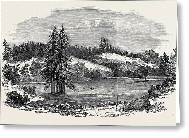 View Of The Country Near Russian River Greeting Card by English School