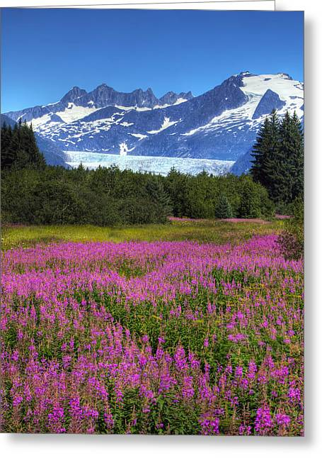 View Of The Mendenhall Glacier Greeting Card by Michael Criss
