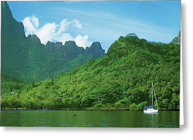 View Of The Opunohu Bay, Moorea Greeting Card