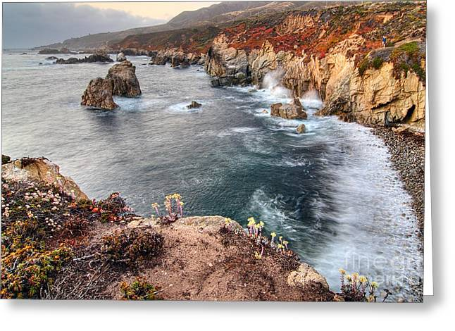 View Of The Rocky Coast From Soberanes Point In Garrapata State  Greeting Card by Jamie Pham