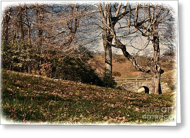 View Off The Blue Ridge Parkay Greeting Card by Sandra Clark