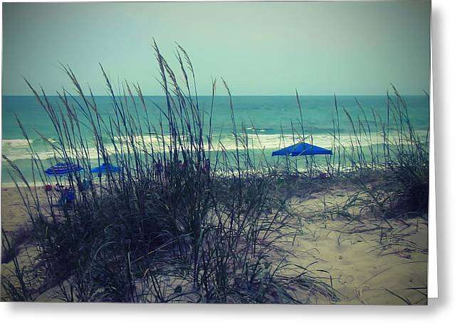 View Thru The Beach Grass Greeting Card by Cathy Lindsey
