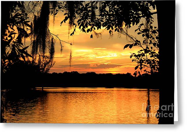 View To A Sunset Greeting Card by Leslie Kirk