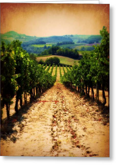 Greeting Card featuring the photograph Vigneto Toscana by Micki Findlay