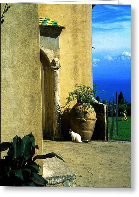 Villa Cimbrone Greeting Card by Nancy Robinson