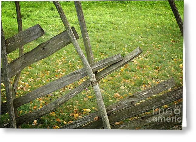Village Fence Greeting Card by Jolanta Meskauskiene