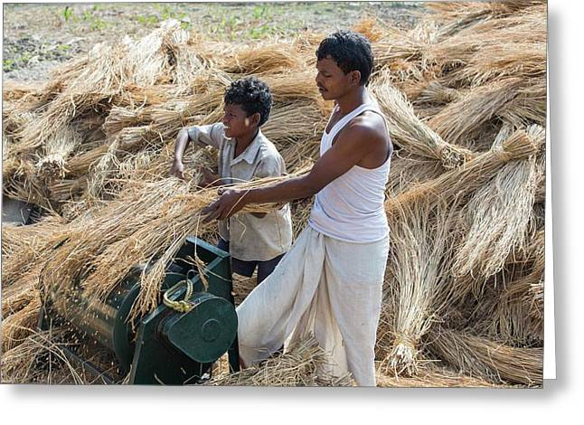 Villagers In The Sunderbans Greeting Card