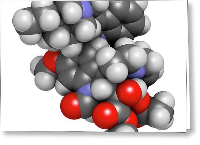 Vincrinstine Cancer Drug Molecule Greeting Card by Molekuul