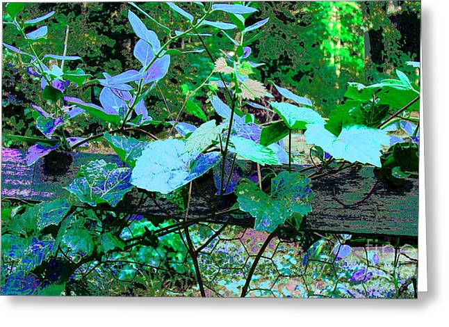 Vines On Fence Greeting Card by Cheryl Raber