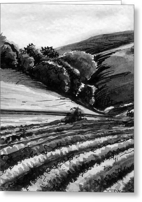 Vineyard Greeting Card by Allison Rogers