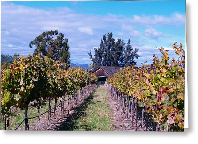 Livermore - Vineyard Barn Greeting Card