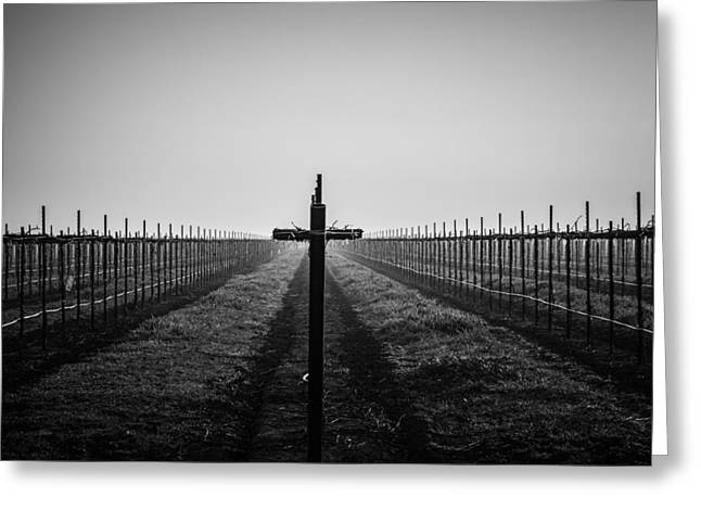 Greeting Card featuring the photograph Vineyard Cross by Randy Bayne