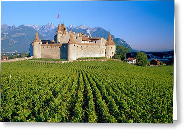 Vineyard In Front Of A Castle, Aigle Greeting Card by Panoramic Images