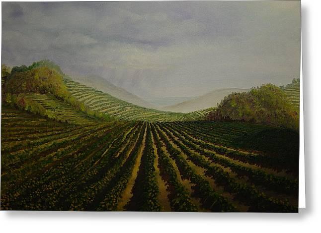 Vineyard Greeting Card by Mark Golomb