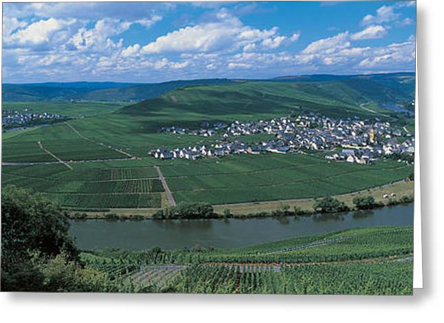 Vineyard Moselle River Germany Greeting Card by Panoramic Images