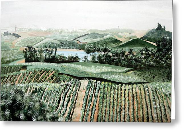 Vineyard On A Foggy Morning Greeting Card by Vickie Wright