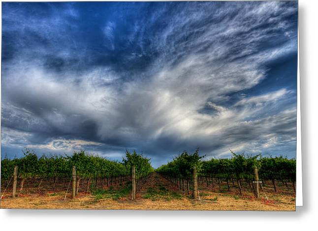 Vineyard Storm Greeting Card by Beth Sargent
