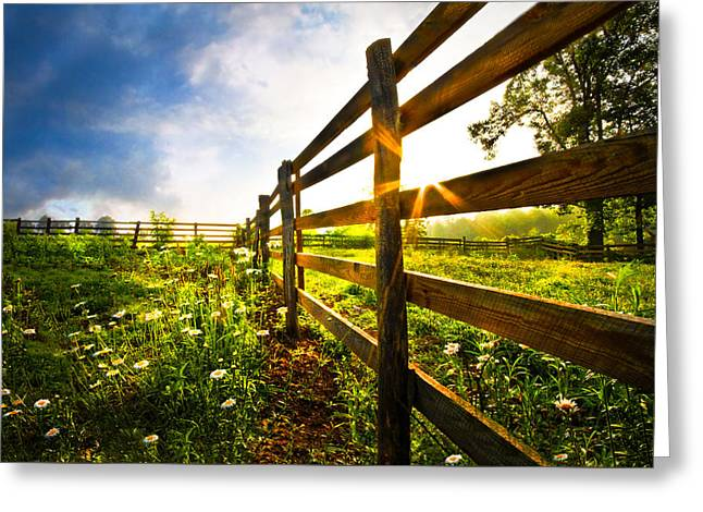 Vineyard Sunrise Greeting Card