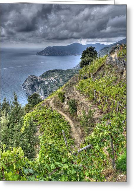 Vineyards Above Cinque Terre 1 Greeting Card
