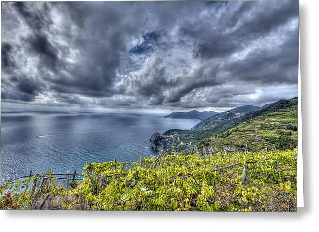 Vineyards Above Cinque Terre Greeting Card