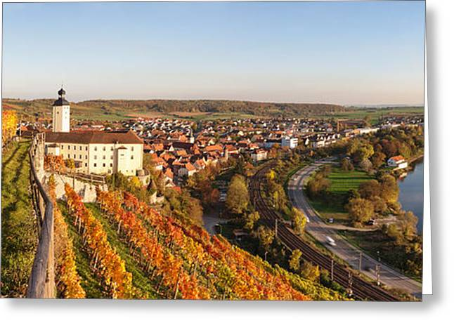 Vineyards Around A Castle, Horneck Greeting Card by Panoramic Images