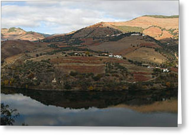 Vineyards At The Riverside, Cima Corgo Greeting Card by Panoramic Images