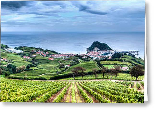 Vineyards By The Sea Greeting Card