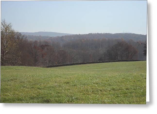 Vineyards In Va - 121235 Greeting Card by DC Photographer