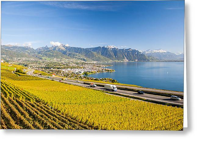 Vineyards Near Montreux Greeting Card